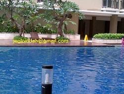 Kursi Kolam Renang (Sun Lounger) di Kolam Renang Apartemen Puri Parkview Meruya Jakarta Barat